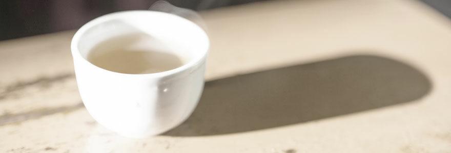 Faire du thé Rooibos